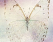 Butterfly, Spiritual Metaphor, Fleeting Beauty, Ethereal and Fragile,Typography Abstract Print, by Paper-Mâché Dream Photography,fPOE