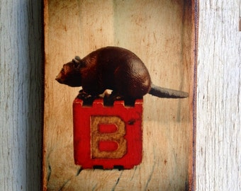 Vintage Toy  B is for Beaver Art/Photo - Wall Art 4x6