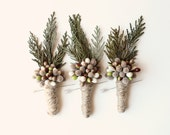 woodland boutonniere, winter weddings, groomsmen wedding boutonniere, natural keepsake, rustic boho boutonniere - PINE - whichgoose