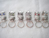 Magnetic or PIn ID Badge Holder or  Reading /Sun Glasses  Holder  Silver Metal Owl & Extra Magnet Affixed