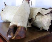 Vinage Cow Hoof Bottle Vase Decanter