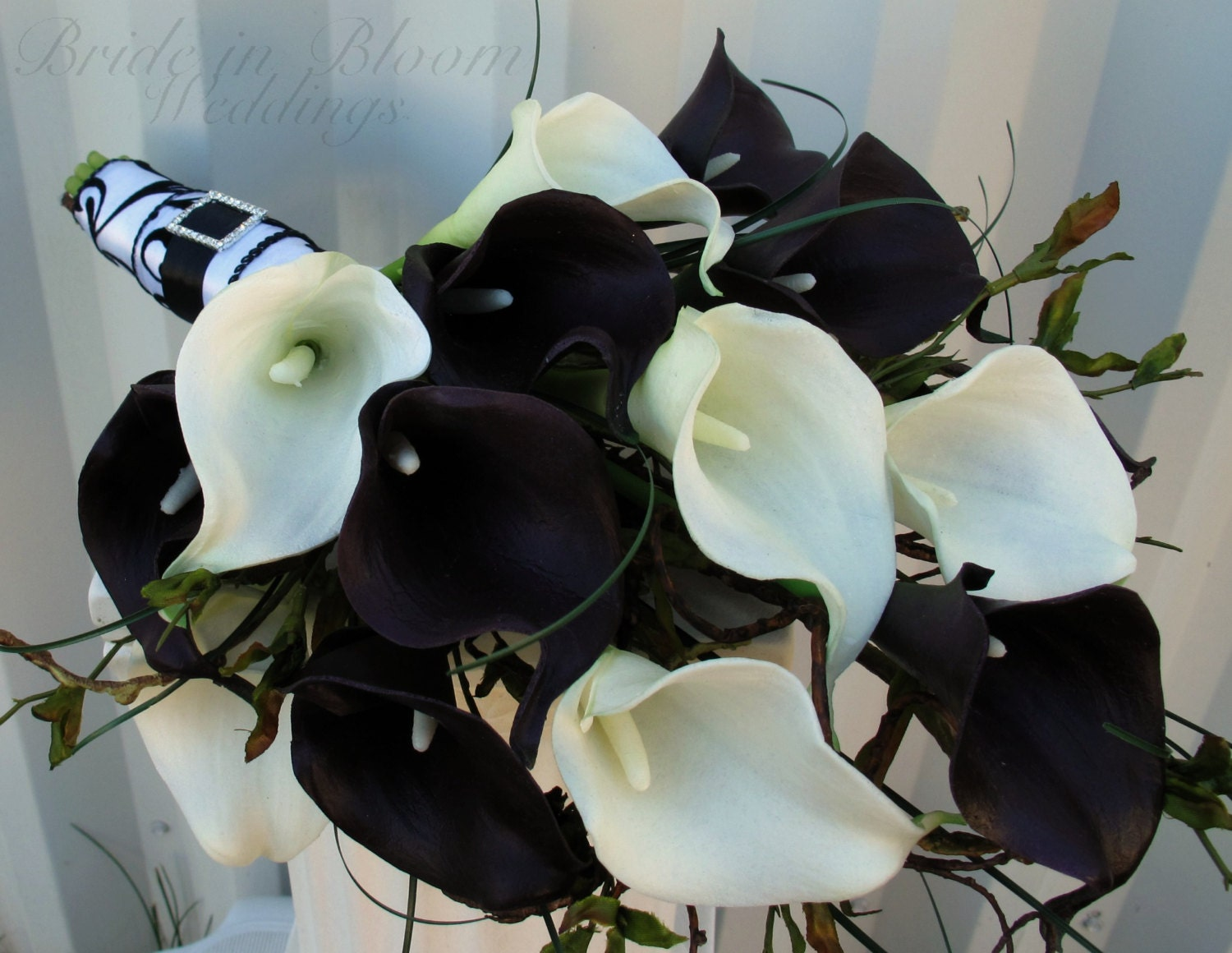 Real Black And White Roses
