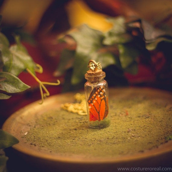 Monarch butterfly pendant terrarium bottle vial