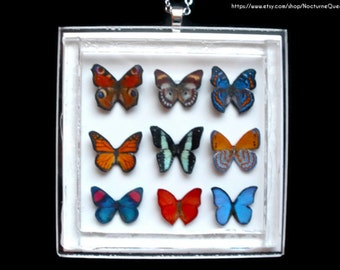Butterfly Collection Necklace