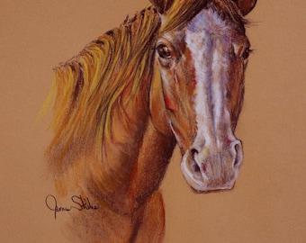 Original Pastel Quarter Horse