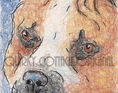American Staffordshire Terrier - Pit Bull Portrait - Dog Art Card - ACEO Pit Bull