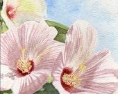 Hibiscus flower painting wall art 5x8 original watercolor painting, floral painting  earthspalette