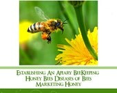 BeeKeeping For Beginners A Tutorial about Honey Bees and Bee Hives for the New Beekeeper