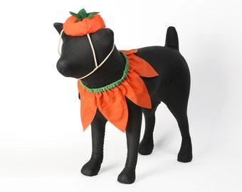 Pumpkin Set: Hat & Collar
