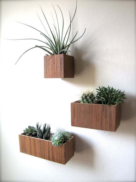 Teak Wall Planters, Hanging Planters, Set of 3 Planters includes 3