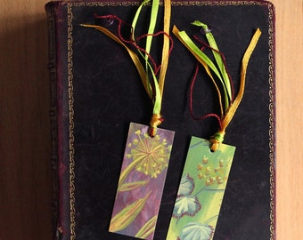 Bookmark illustration set x 2 Garden Botanical Floral, Illustrated book marks, handmade book marks, Eco friendly materials