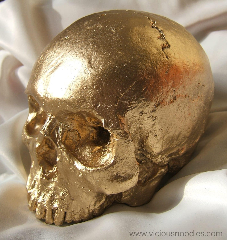skull candle holder natural full size human skull candle - human skull replica gold finish  full size human skull replica (plaster ofparis)