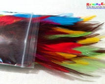 Dyed Feathers (Rooster) - Rainbow Assortment - 100 Piece Lot - 4-6 inches - Crafting Supplies
