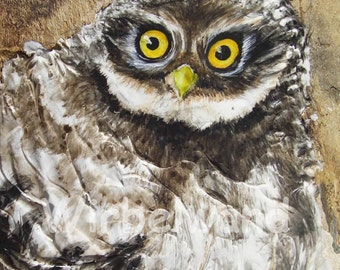 Greeting Card Motif Little Owlet (4,2 x 5,9 inch) Double card without text