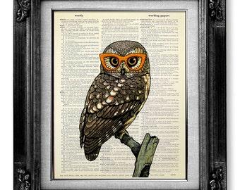 BIRD PAINTING, Owl Wall Hanging, OWL Decor, Dictionary Art Print on Dictionary Paper, Owl Wall Art Owl Wall Decor, Nerdy Whimsical Owl Art