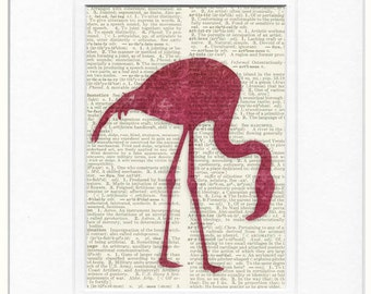 Flamingo, pink flamingo print