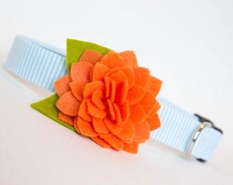 Seersucker Flower Dog Collar - Orange Dahlia Sky Blue