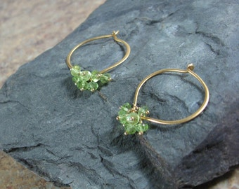 Peridot Gold Hoop Earrings, Gemstone Clusters, Medium or Large