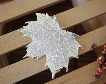 Silver Leaf Brooch, Maple Leaf, Real Leaf Pin, Sterling Silver Leaf, Sugar Maple Leaf, BROOCH