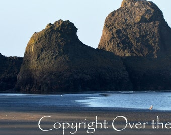 Beach Photography Greeting Card Photo Nature Sand Surf and Rock at Pacific Ocean Copalis Beach in Summer