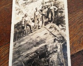 loggers northwest forest standing on old growth log antique black and white photo