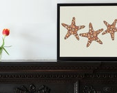 "STARFISH : 5"" x 6.8"" small print / blank greeting card  (includes envelope)"
