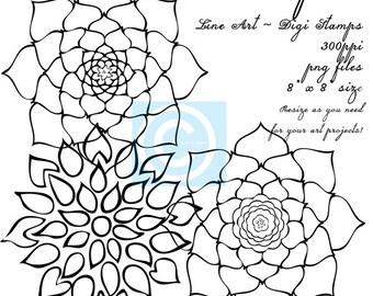 Instant Download, Floral Digi Stamps, Floral Line Art Drawings, Flowers Line Art, Line Art Flowers, PNG Flowers, Downloadable Graphics, Art