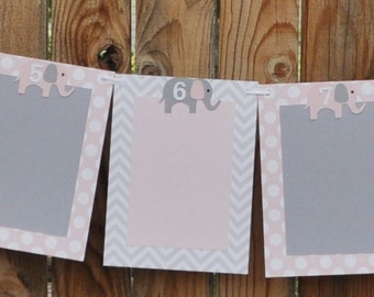 Girl Elephant 12 Month Photo Banner- Polka Dots and Chevron