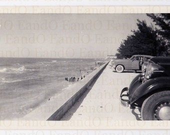 """Antique Photo """"At the Shore"""" 1950s Cars Parked Along the Shore"""
