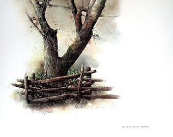 Split Rail, Old Fence, American Art, 1974 Vintage Book Page, 12.5 x 16