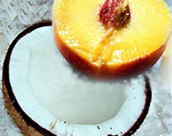Coconut Milk and Peaches Candle Soap 2 Oz Fragrance Oil Scent - Supplies- Phthalate-free - Fruity Coconut Peachy Scented Oil