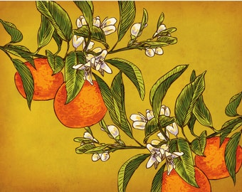 Oranges on Branches - Box Set of 8 Folding Cards