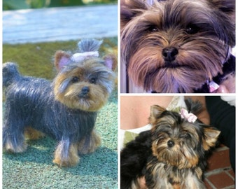 Needle Felted Dog / Custom Pet Portrait  / Your Pet in Miniature / Cute / Poseable / Personalized gift  / example Yorkie