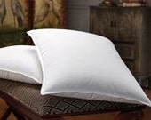 Outdoor Pillow Inserts  - You pick the size