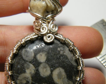 Fossil: Woven wire wrapped Fossil Coral pendant