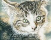 Barn Kitten Color Pencl Kit Lesson