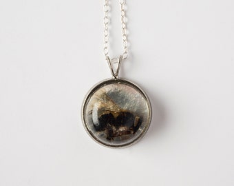 Silver Real Bee Necklace - Honeybee Jewelry - Specimen - Natural History - Biology Jewelry