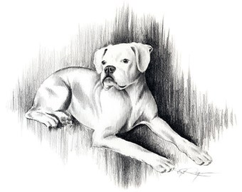WHITE BOXER Art Print Pencil Drawing Signed by Artist DJ Rogers