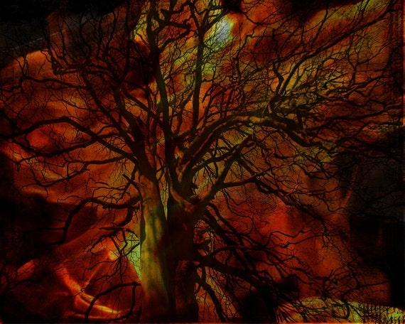 50% OFF SALE: Burning Tree Digital Art Print
