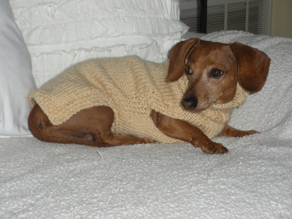 Knitting Patterns For Dachshund Dog Sweaters : Small Dog Sweater PDF PATTERN Mini Dachshund Doxie Sweater