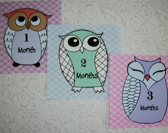 OWLS - Monthy Photos - BaBy PHOTo ProPs - SeT oF 12 - Click on all photos - Stickers - AON 4489702