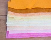 Destash - Scrap Felt Sheets
