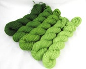 Gradient Yarn Kit, Hand Dyed Merino Wool, Pebble Sock - Shire