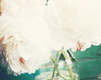 White summer flower photography, shabby chic style picture, peony flowers