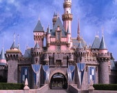 Beautiful castle 10ft x 10ft Backdrop Computer Printed Photography Background zjz-827