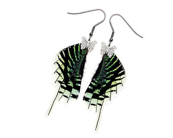 Real Butterfly Wing Earrings  (Urania Leilus Hindwing - E178)
