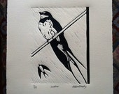 Swallow -  monochrome artist's print on cream paper