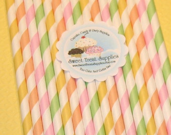 Citrus Berry Striped Paper Straws - DIY Flag Toppers  (24)