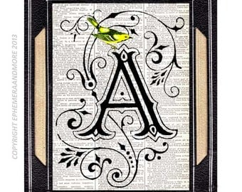 LETTER A Initial Monogram art print wall decor Ornate Victorian Blue Bird alphabet typography on upcycled vintage dictionary book page 5x7