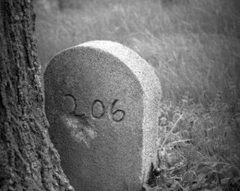 Halloween Photography - Grave Photography - Fine Art Photography - Cemetery Photography - Graveyard Landscape - Graveyard Photography